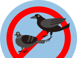 千葉・東京・茨城の害鳥駆除対策