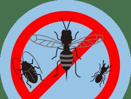 千葉・東京・茨城の害虫駆除対策