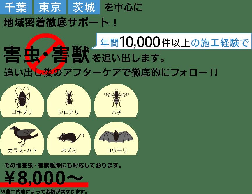 千葉・東京・茨城を中心に害虫駆除、害獣駆除、害鳥駆除を行なっています。
