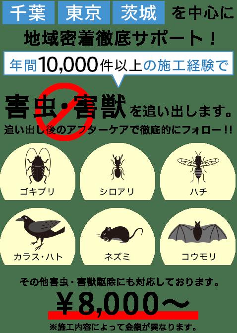 年間10,000件以上の害虫・害獣・害鳥駆除の実績