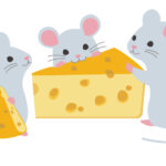 ネズミの好物はチーズではない!?好きなエサで駆除する方法