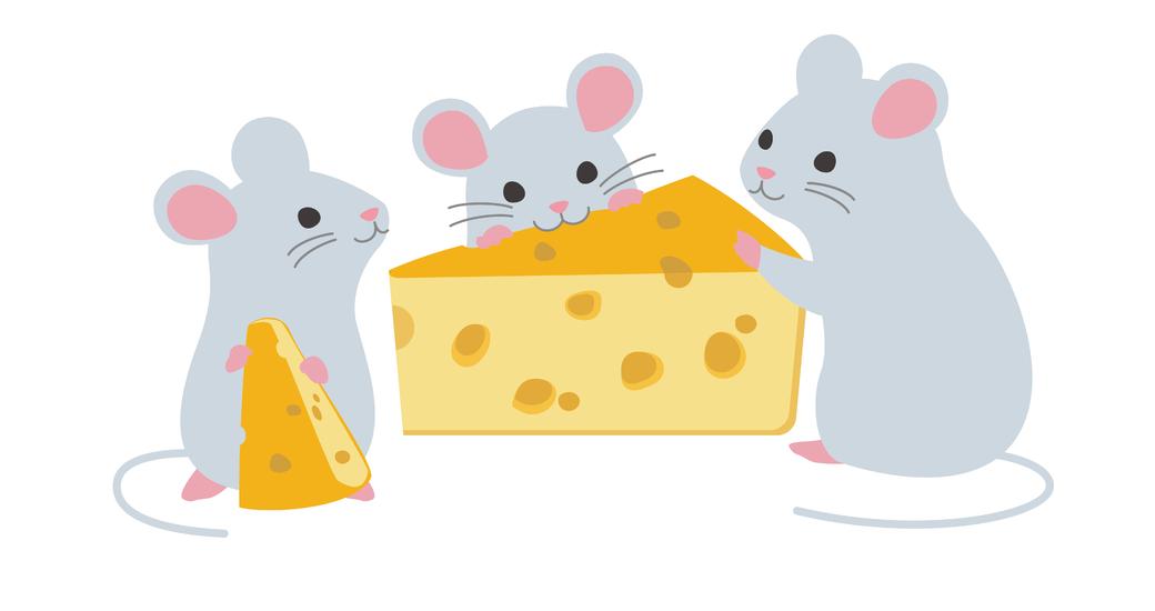 ネズミ 餌 ペット