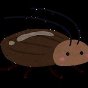 ゴキブリ3種類の特徴
