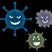 コウモリ感染症と病原菌