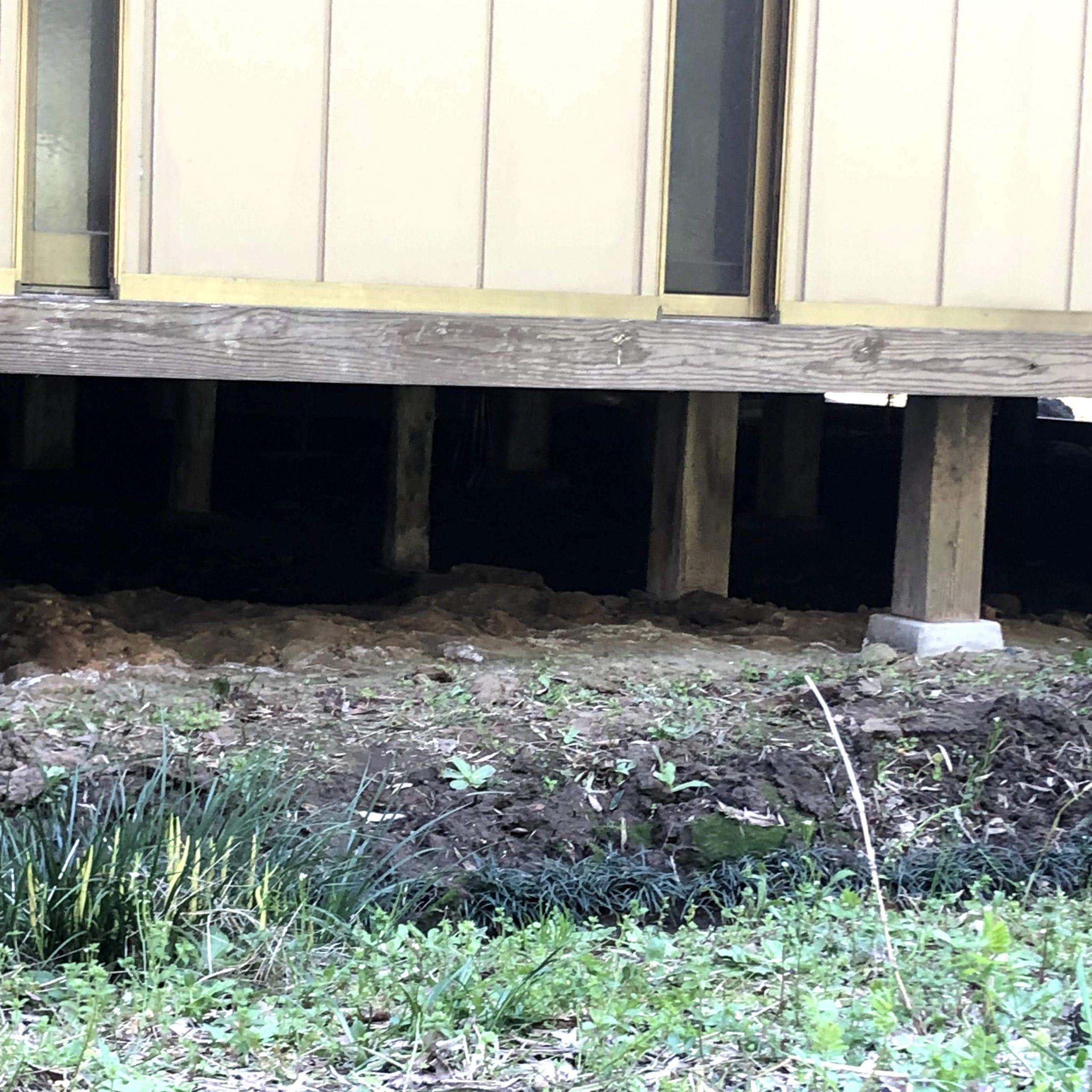 千葉県柏市のk様の害獣防除:施工前