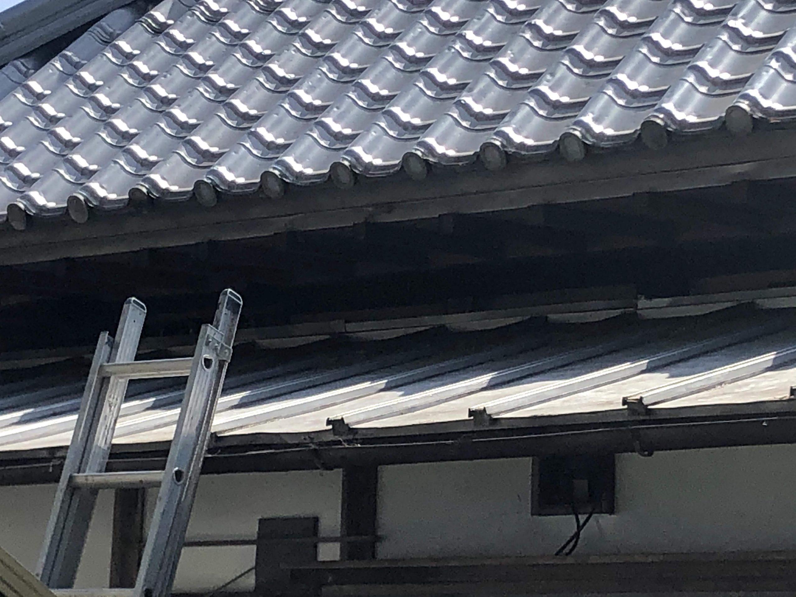 千葉県柏市のk様のハクビシン駆除:施工前