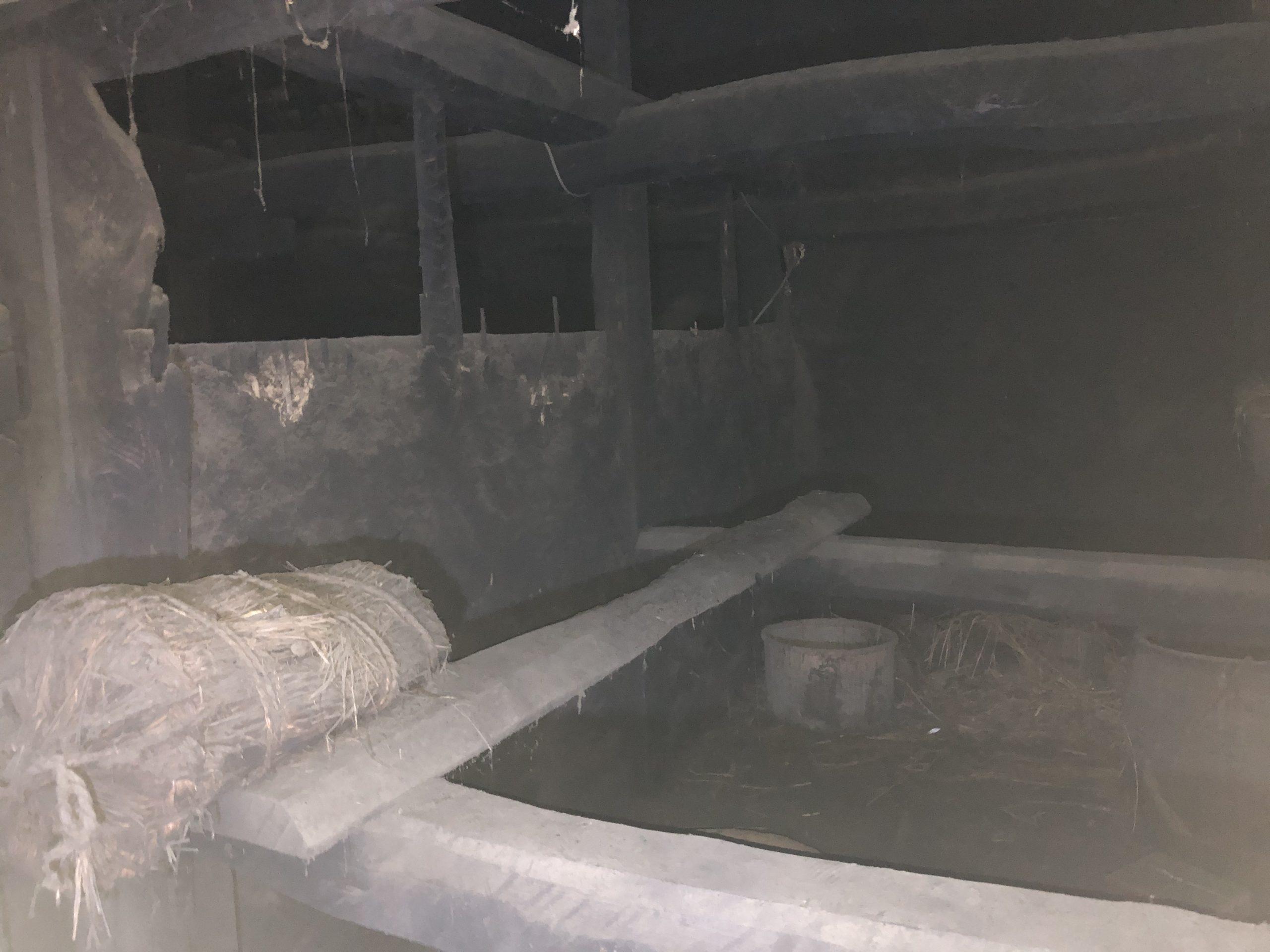 千葉県柏市のk様のハクビシン駆除:施工後