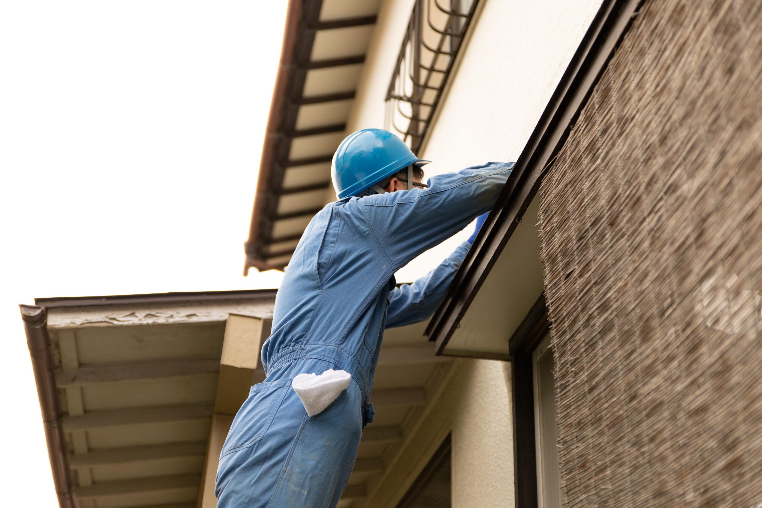 戸建て住宅外壁の点検と害鳥駆除