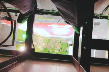 千葉県千葉市のM店のカラス駆除
