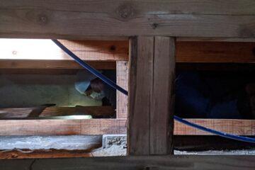 千葉県印西市のK様のシロアリ駆除