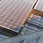 茨城県神栖市で急増しているハトによるソーラーパネル被害