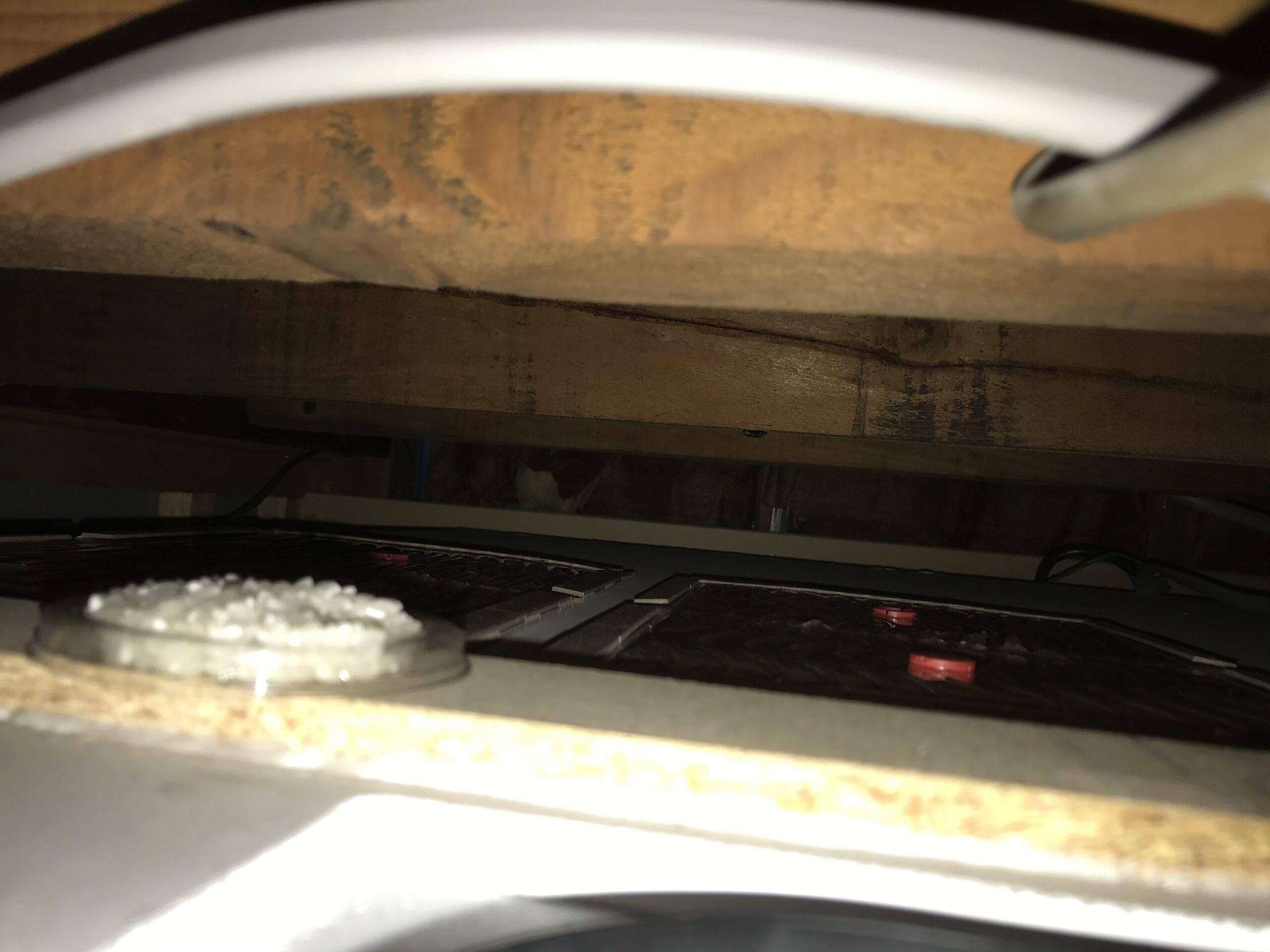 東京都江戸川区のアパートのネズミ駆除:施工後