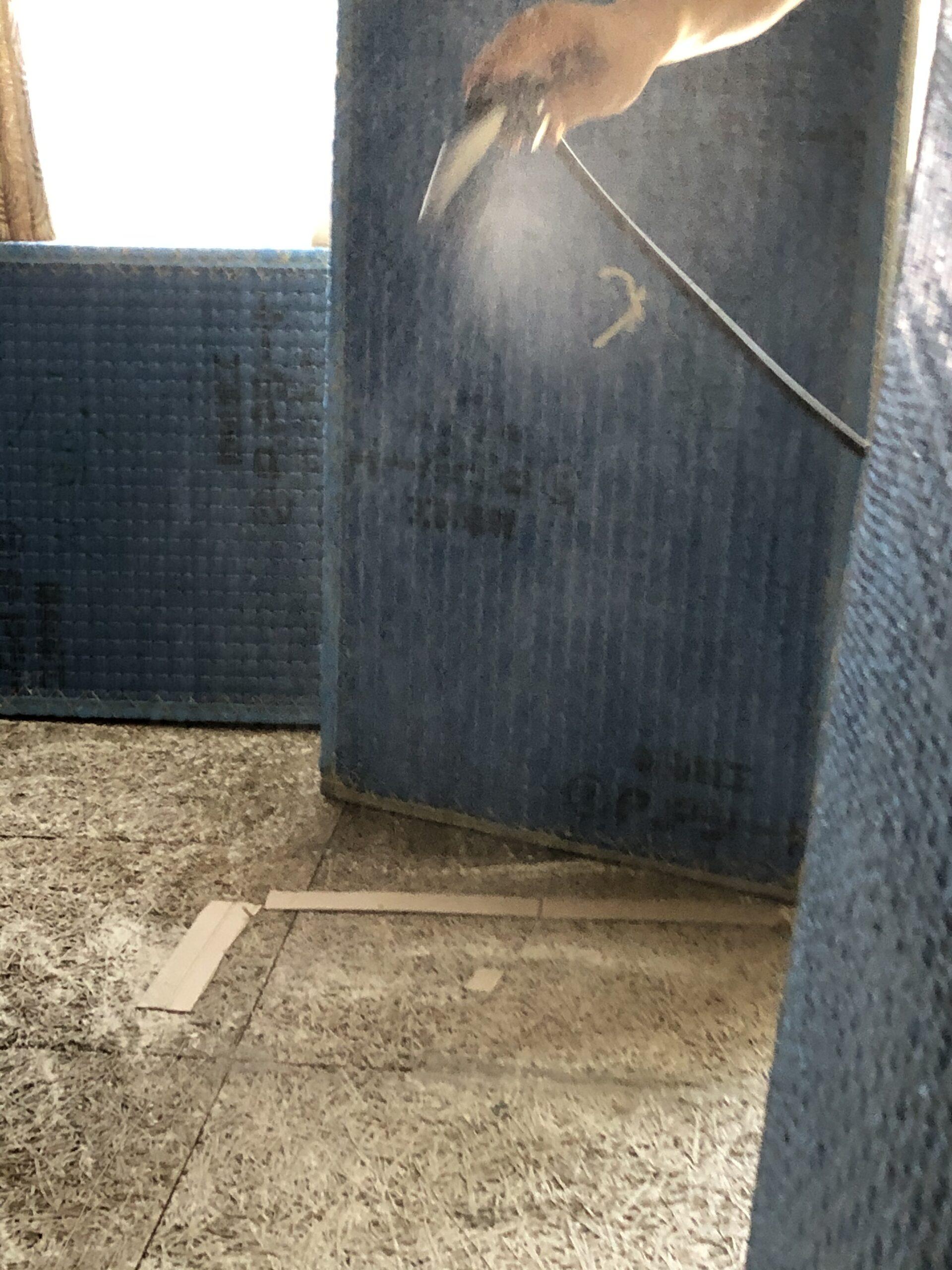 千葉県船橋市のT様の害虫駆除:施工前