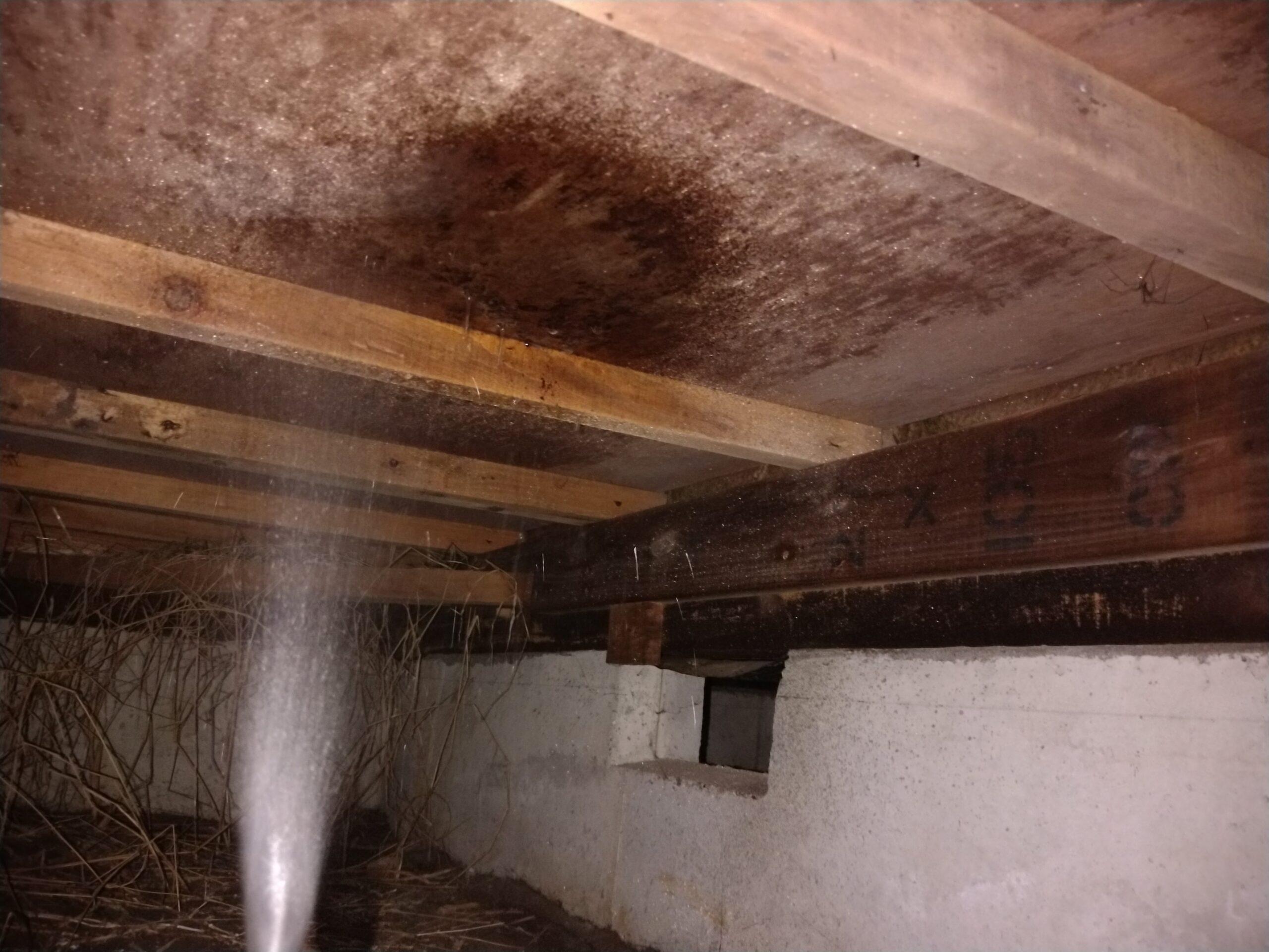 千葉県八千代市のT様のシロアリ駆除:施工後