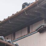 冬になると屋根裏や壁から聞こえる物音の正体は?冬眠しないネズミやハクビシン?