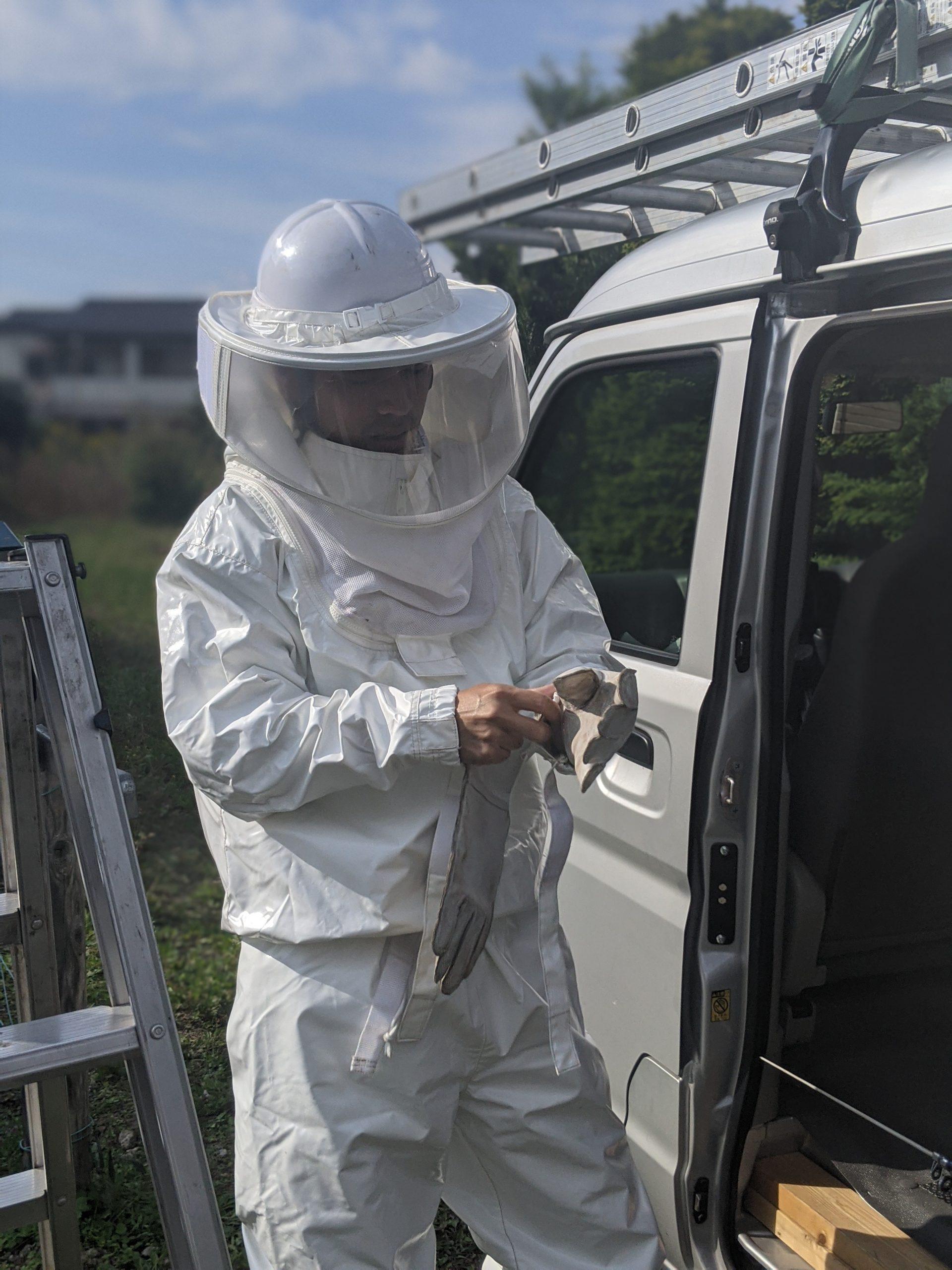 危険なハチの駆除について
