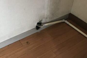 東京都江戸川区のA様のネズミ駆除