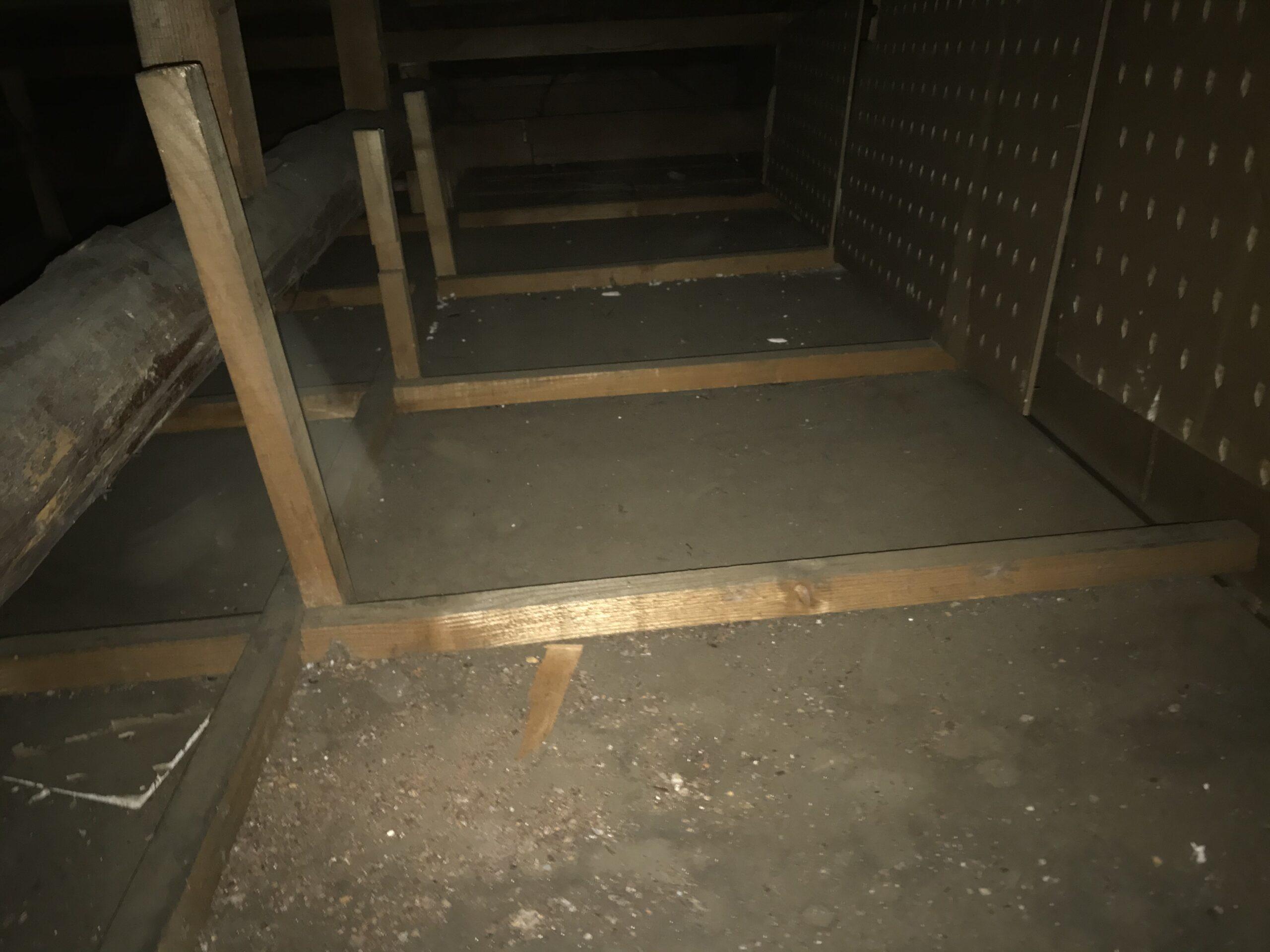 東京都足立区の空き家のネズミ駆除:施工前