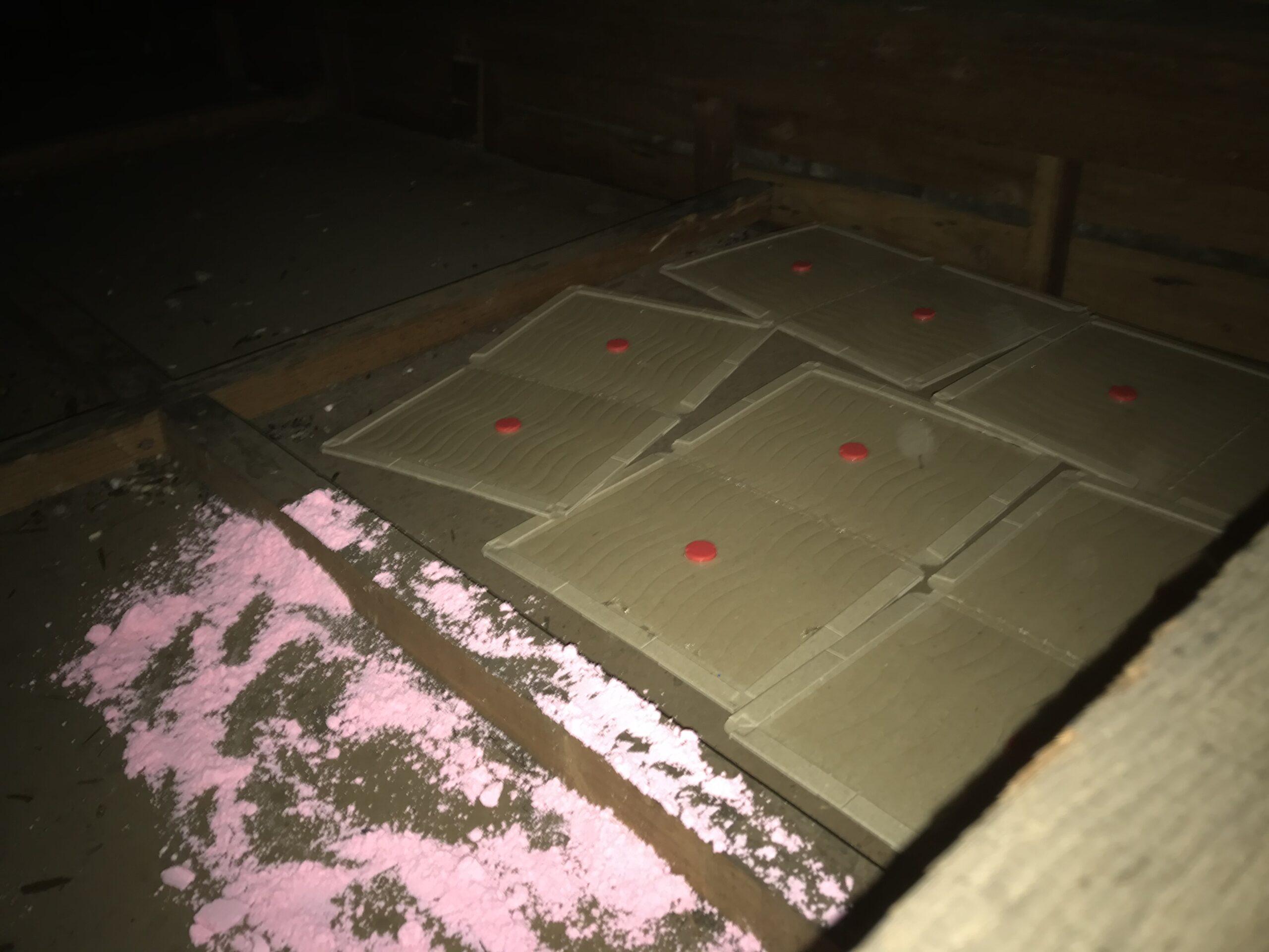 東京都足立区の空き家のネズミ駆除:施工後
