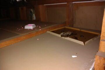 東京都足立区のK様のネズミ駆除