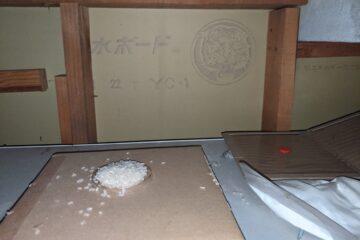 千葉県船橋市T様のネズミ駆除