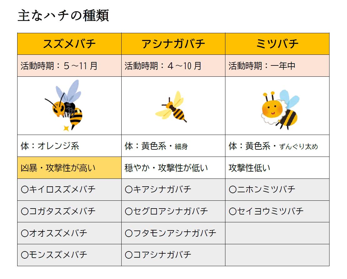 主なハチの種類はスズメバチやアシナガバチ、ミツバチ。種類によって活動時期、攻撃性の高さが異なりますが、それぞれ毒針を持っています。