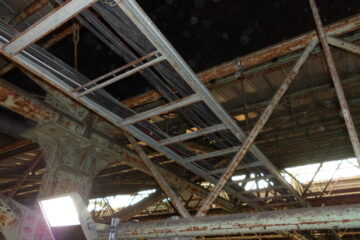 千葉県船橋市の倉庫のカラス駆除