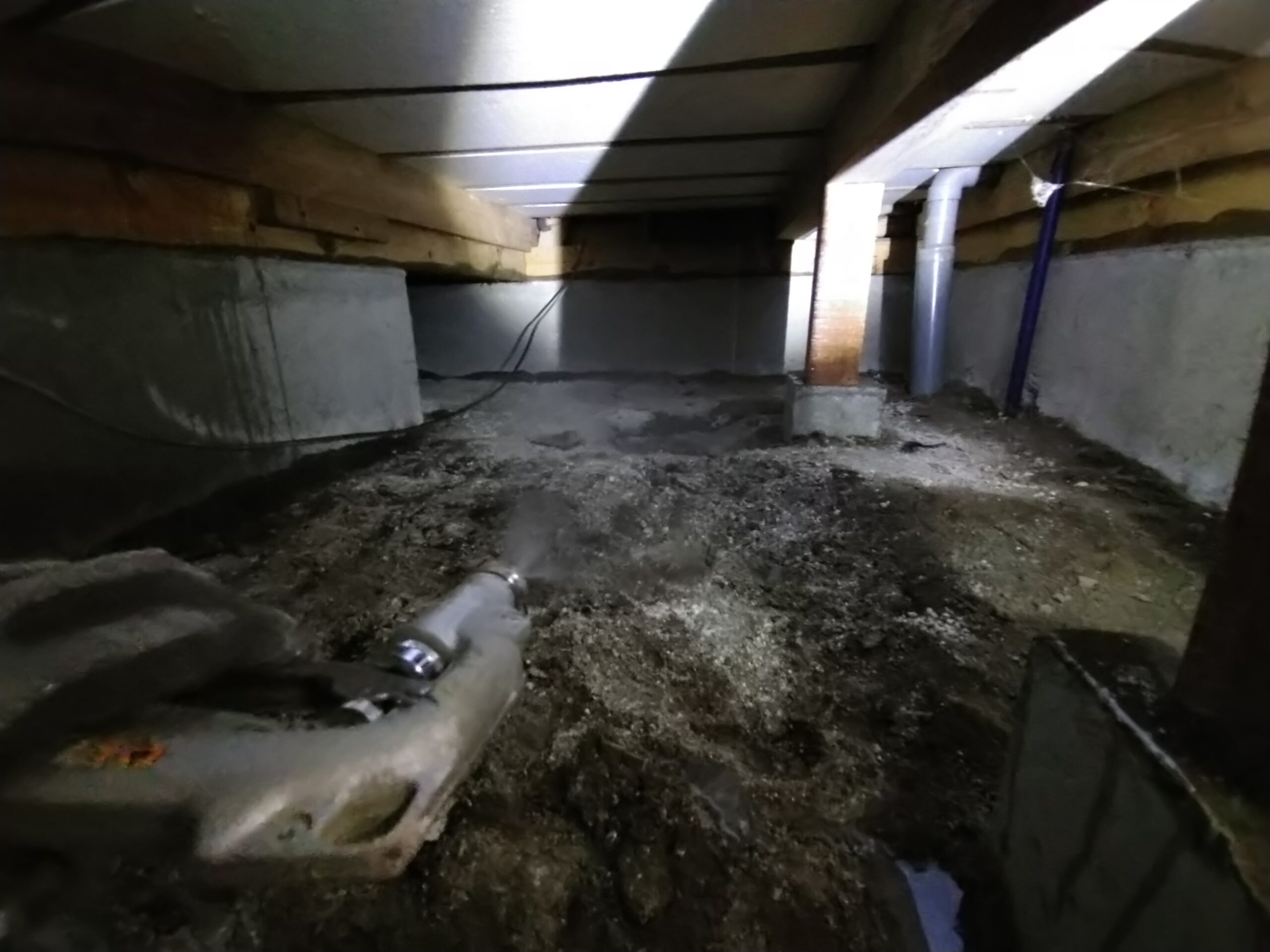 千葉県松戸市のM様のシロアリ駆除:施工後