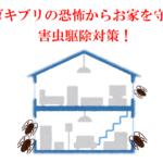 コロナ禍でゴキブリ大繁殖?!発生させないお掃除のコツ