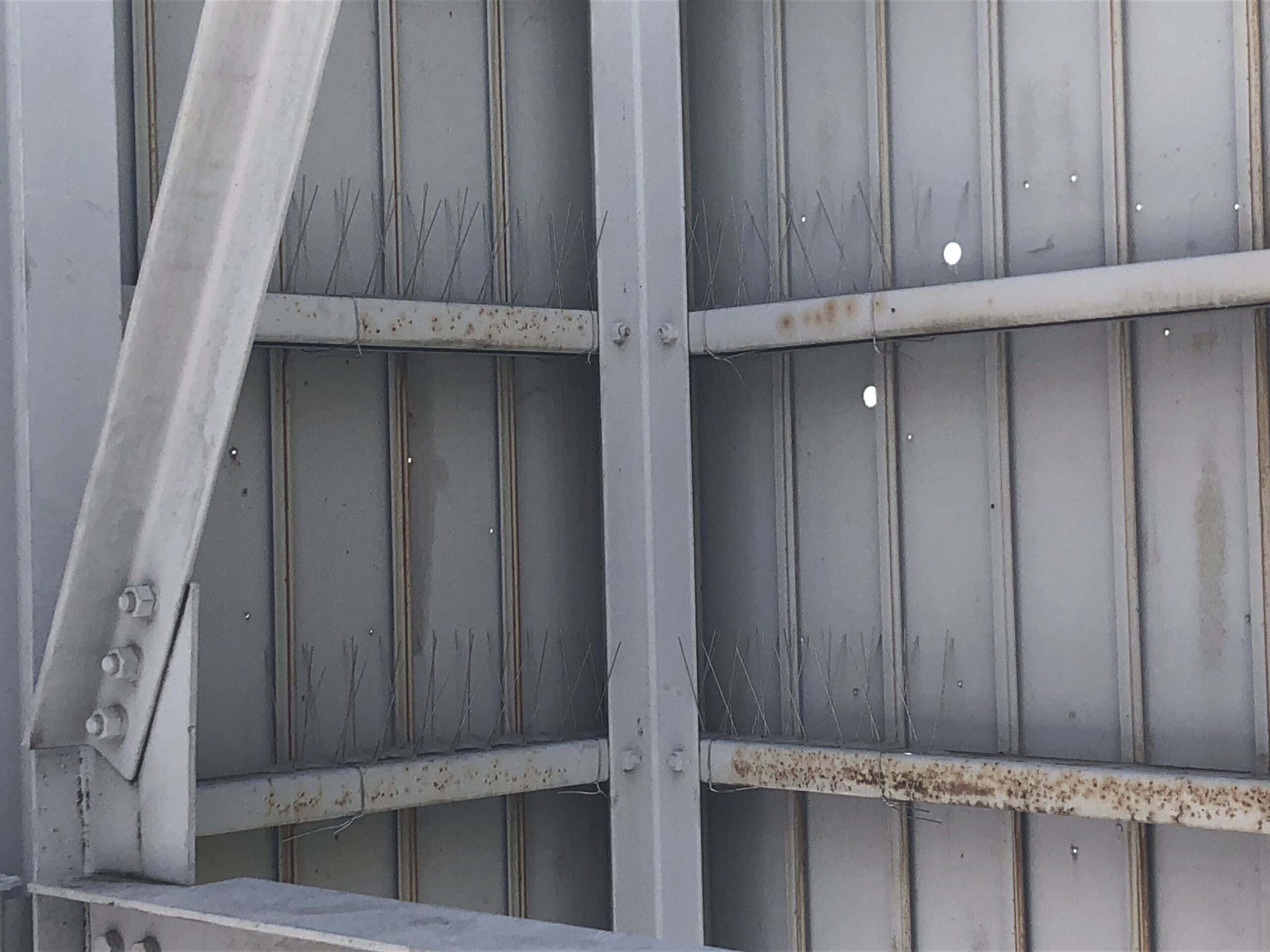 千葉県千葉市のH様のカラス駆除:施工後