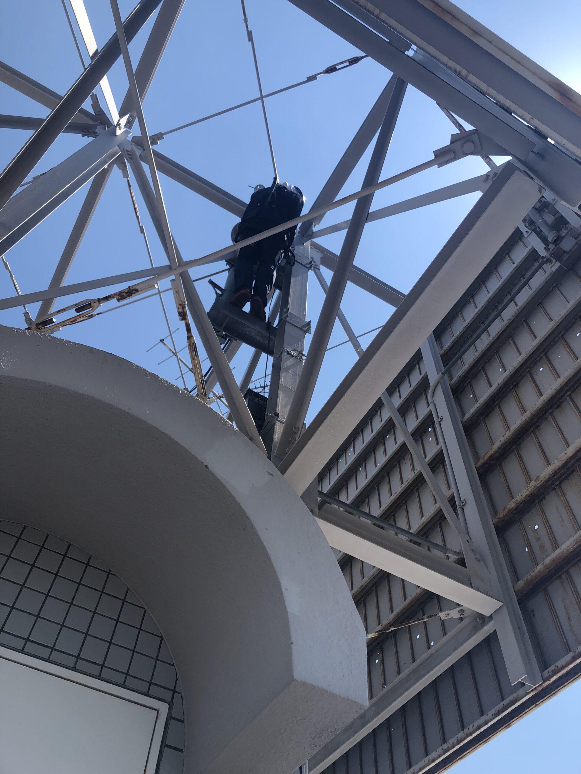 千葉県千葉市のH様のカラス駆除:施工前