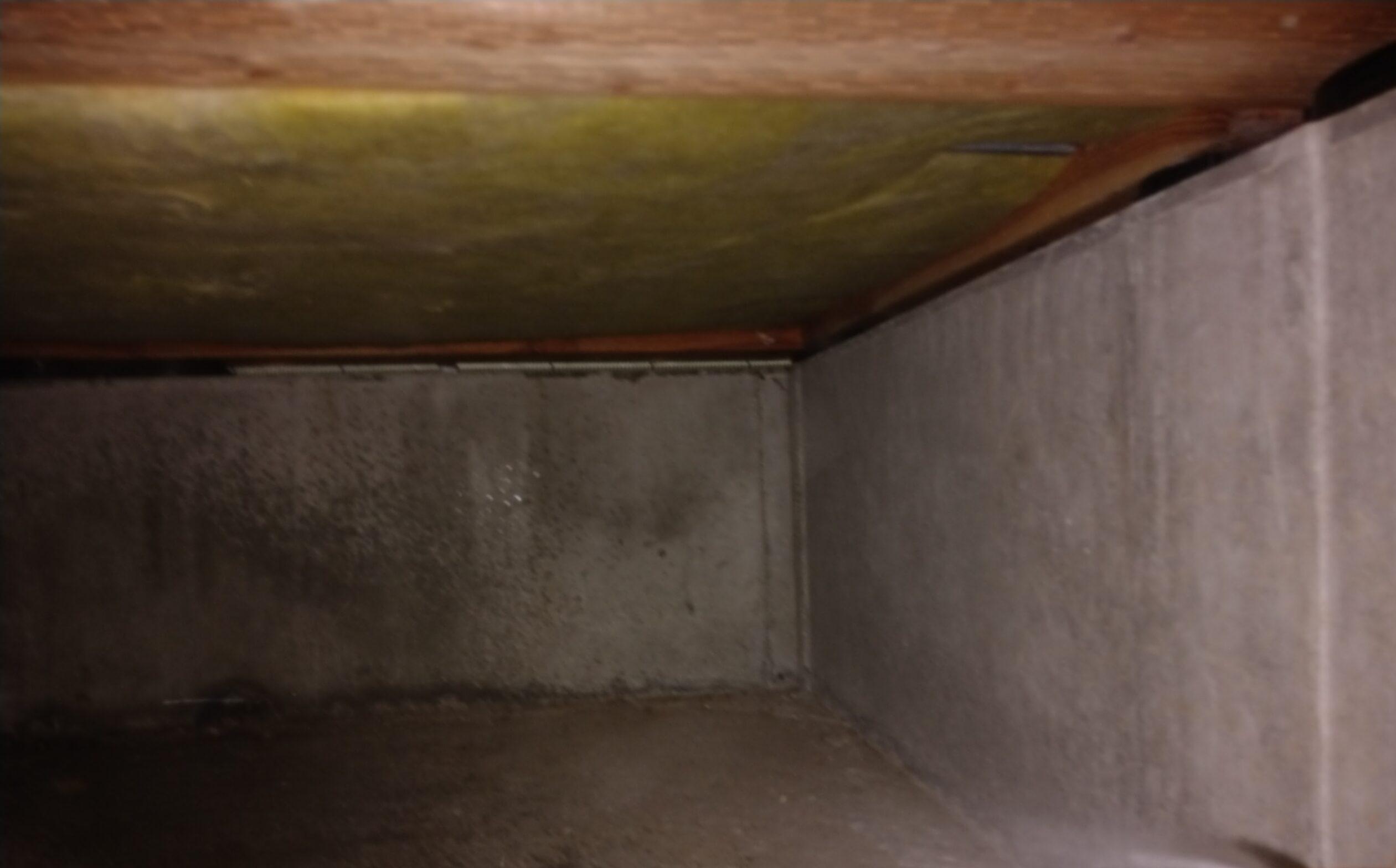 千葉県市川市のK様のシロアリ防除:施工前