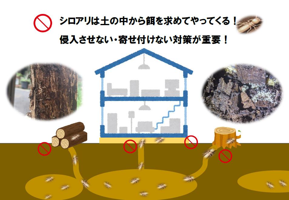 シロアリは土の中から木材の餌を求めてやってきます。侵入させない・寄せ付けない対策が重要です