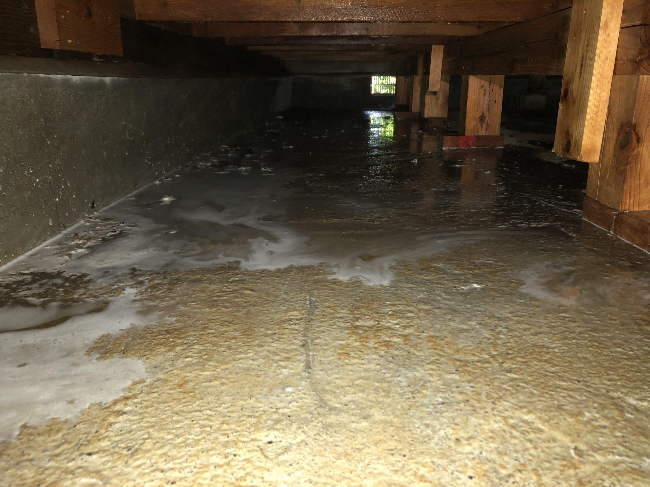 千葉県千葉市のS様のシロアリ防除・クロアリ駆除:施工後