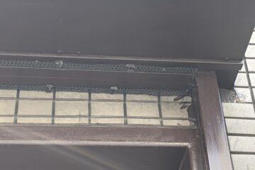千葉県四街道市のH様のネズミ駆除