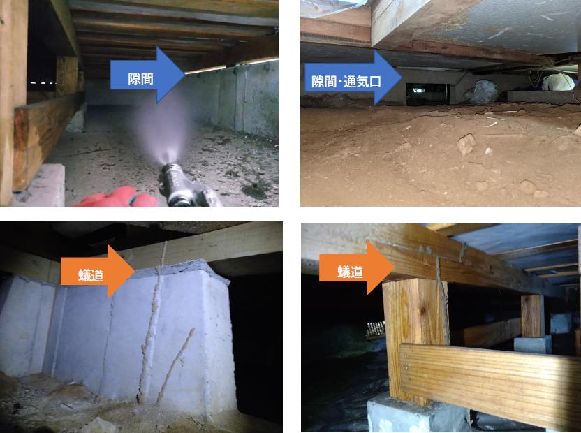 シロアリ被害・床下の隙間・柱・土・床下通気口などから蟻道。コンクリート造・木造も被害に遭う